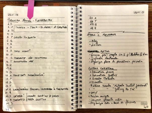 Registro Mensal do Bullet Journal, mostrando minha agenda e metas para o mês